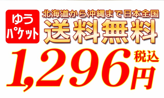 送料無料1296円